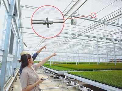 米花园艺科技有限公司