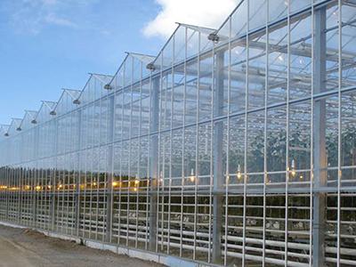 荷兰BOM温室主体