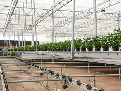 云南米花园艺科技有限公司